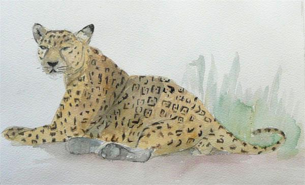 aquarelle-030-jaguar.jpg