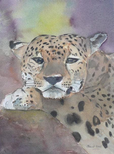 aquarelle-032-jaguar.jpg