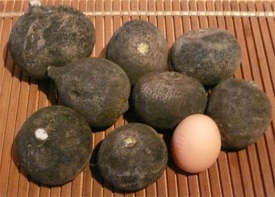 Noir c 39 est noir taches et couleurs - Cuisiner un radis noir ...